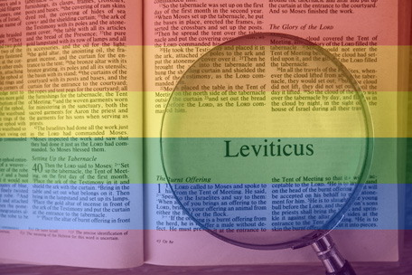 Leviticus 18:22 does not condemn sexual diversity.