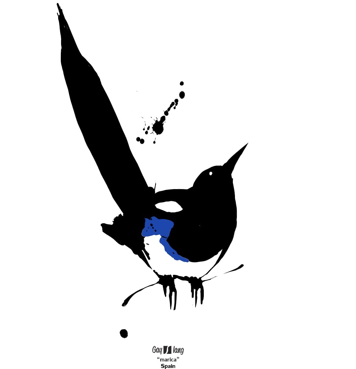 The word Maricón is augmentative of fag, which is also a kind of magpie