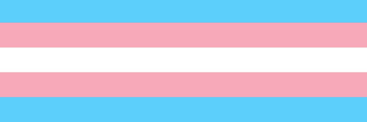 Image of the transgender flag, composed of 5 stripes, the central one in white, followed by two pink and two blue stripes.