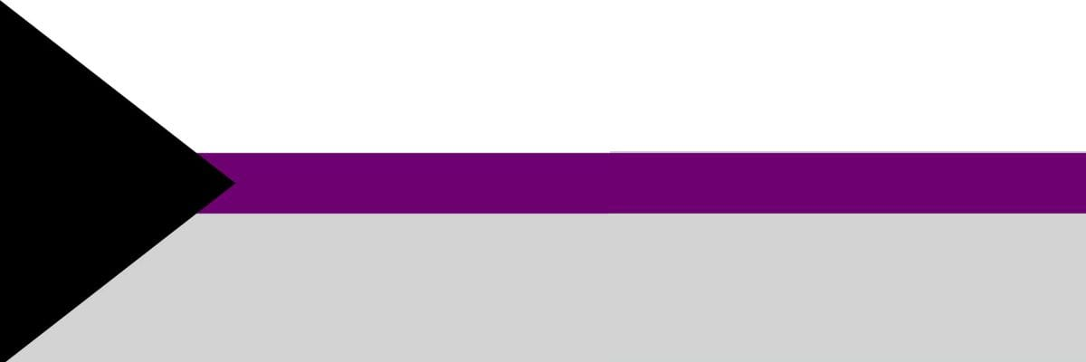 Image of the demisexual flag composed of 3 stripes, centered by a purple and a white above and a gray below. A vertical black triangle appears on the left of the image.