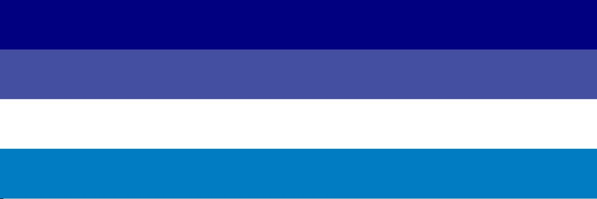 G0y flag, stripes of different shades of blue and one of white.