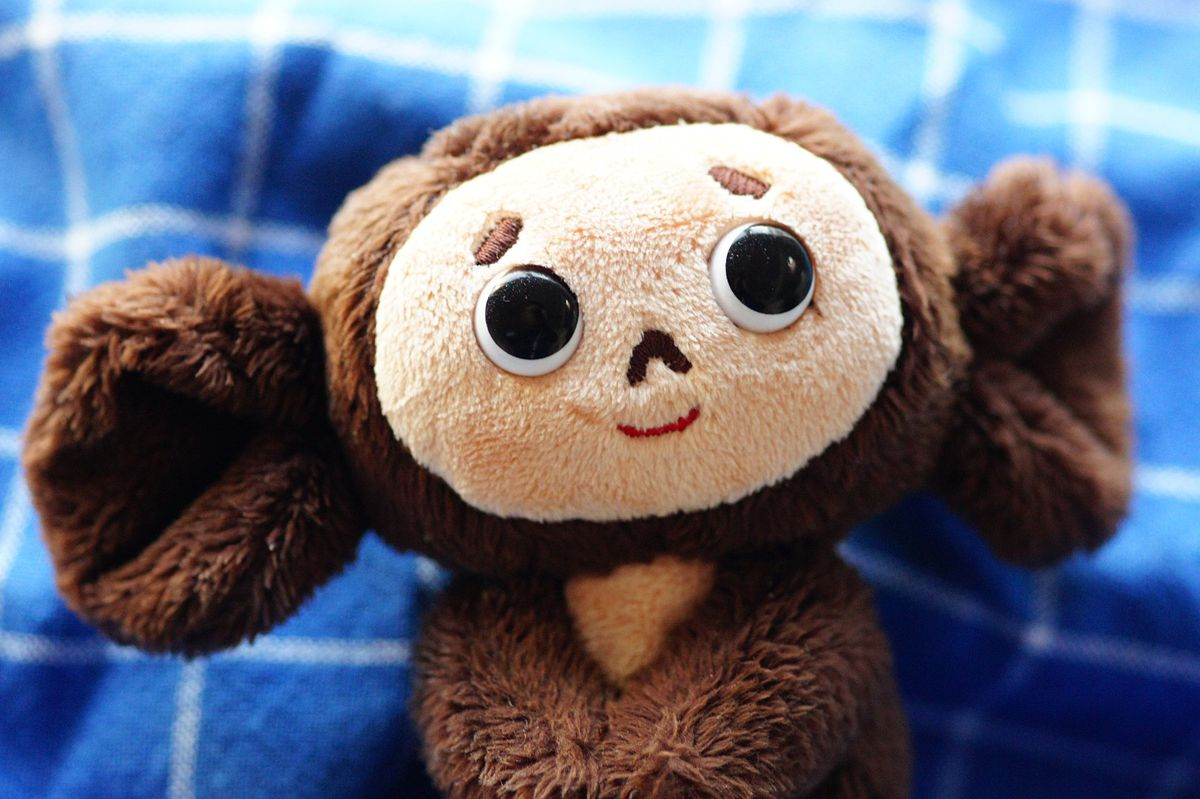 Photograph of the Cheburashka doll
