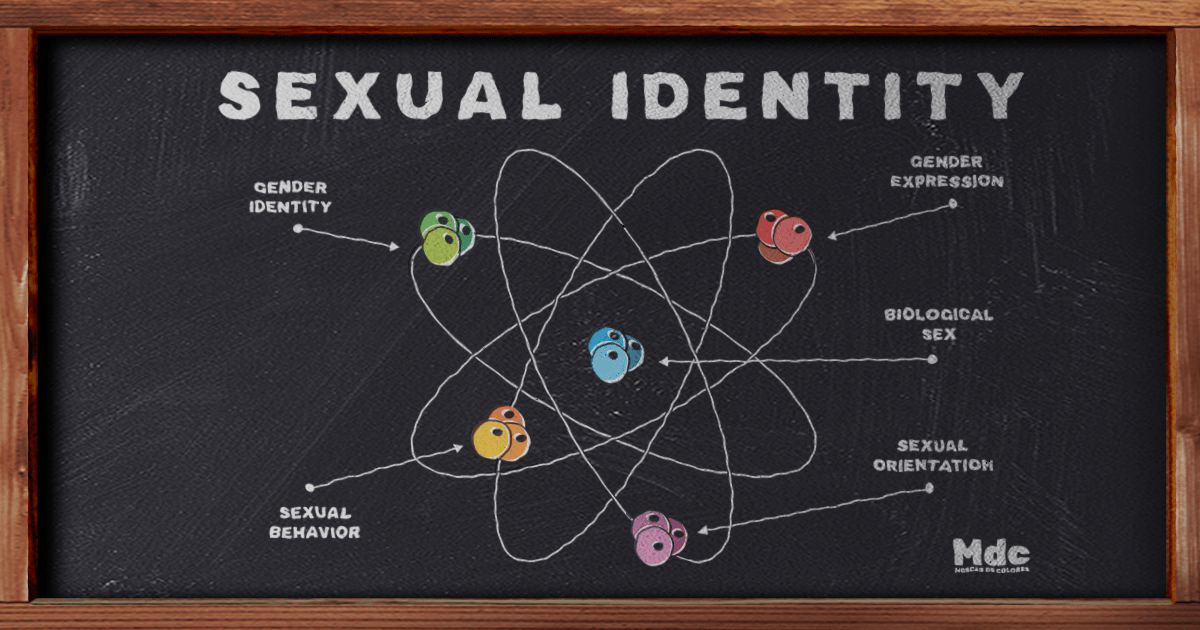 Scheme of the components of sexual identity, represented as if it were an atom. Drawn in chalk on a blackboard.