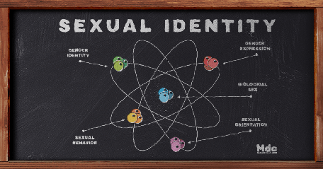 Scheme of the components of sexual identity, represented as if it were an atom, drawn in chalk on a blackboard.